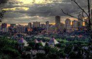 مفارقة بيئية: الأشجار في المدن الكبيرة تنمو أسرع منها في الأرياف