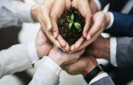 باحثة اقتصادية تضع دراسة حول تمويل المشروعات الصغيرة والمتوسطة عن طريق سوق الأوراق المالية