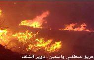 حراج الساحل السوري: حرائق في وضح الشتاء والفاعل مجهول!!
